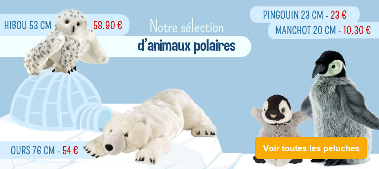 Peluches et ours polaires