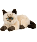 Peluche chat siamois couch� 25 cm