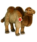 Peluche collection he90579
