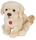 peluche Peluche chien golden retriever assis 25 cm