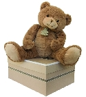 Calin'ours gm marron 50 cm