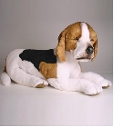 Peluche chien Beagle allongé 60 cm